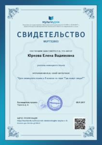 Svidetelstvo-Urok-nemetskogo-yazyka-v-5-klasse-po-teme-_Gde-zhivut-lyudi3F_.png